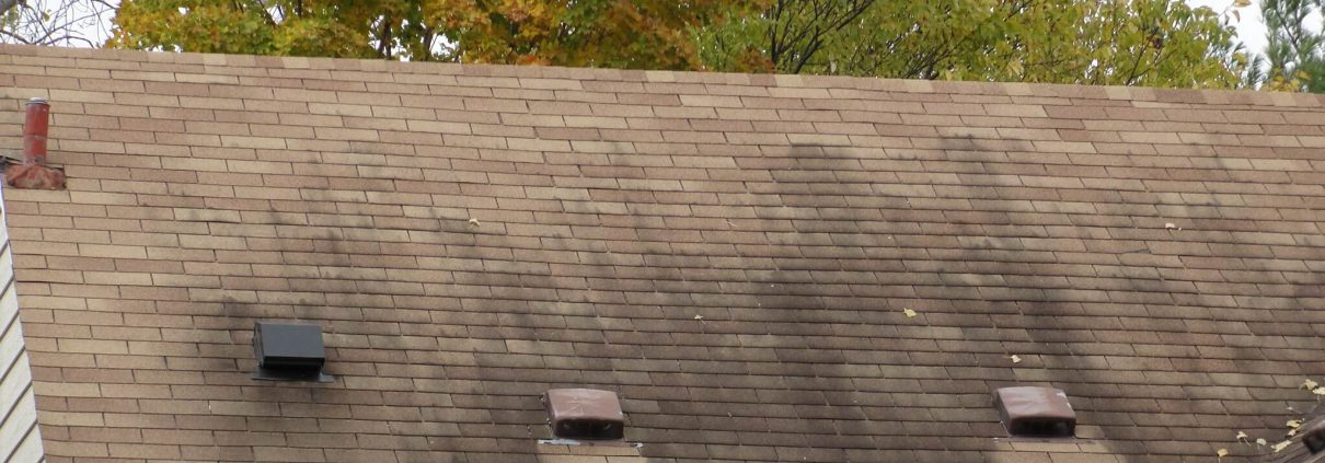 Roof Stains And How To Remove Them Beneficial Roofing