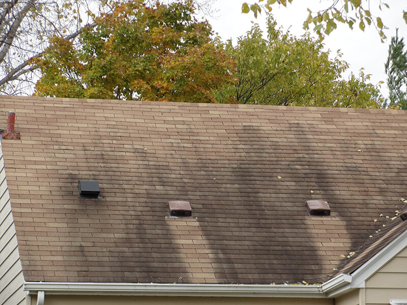 Roof Stains And How To Remove Them