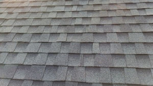 roofing shingles architechtural